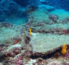 Worlds Oldest Shipwreck Found in Mediterranean